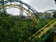Longfeng Roller Coaster (Chuanlord Holiday Manor) 2018 04.jpg