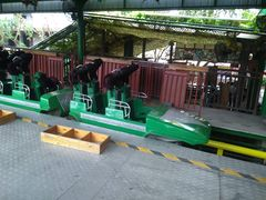 Longfeng Roller Coaster (Chuanlord Holiday Manor) 2018 03.jpg