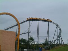 Twin Looper (American Adventure) 20.jpg